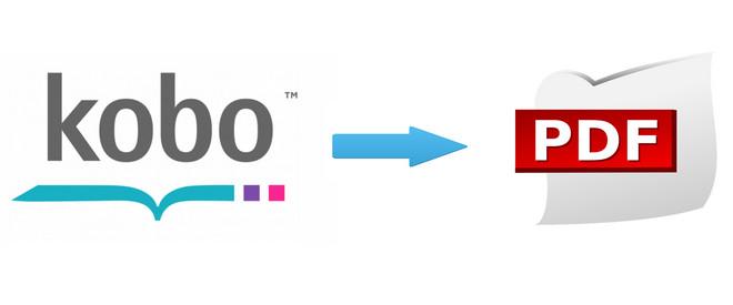 Easy Way to Convert Kobo eBooks to PDF | Any eBook Converter